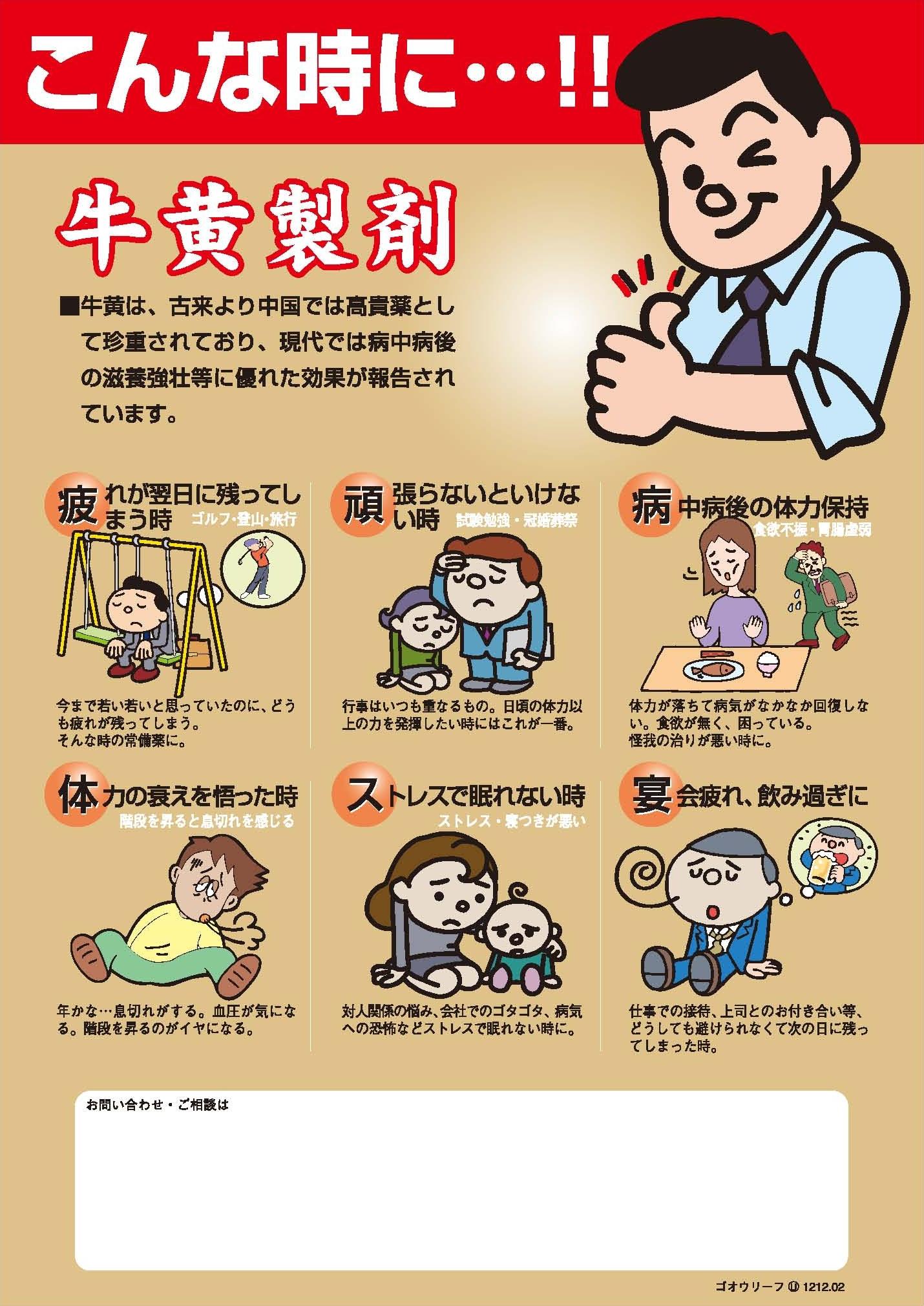 牛黄製剤チラシB5.jpg