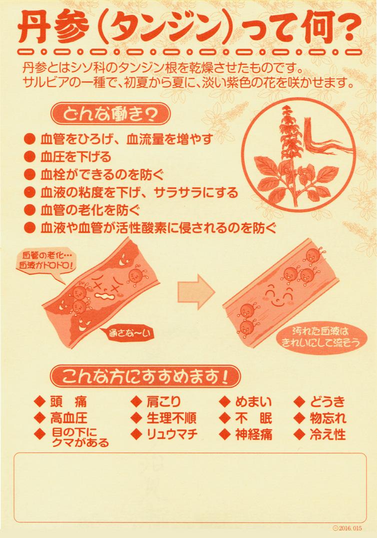 丹参ミニチラシB6.jpg