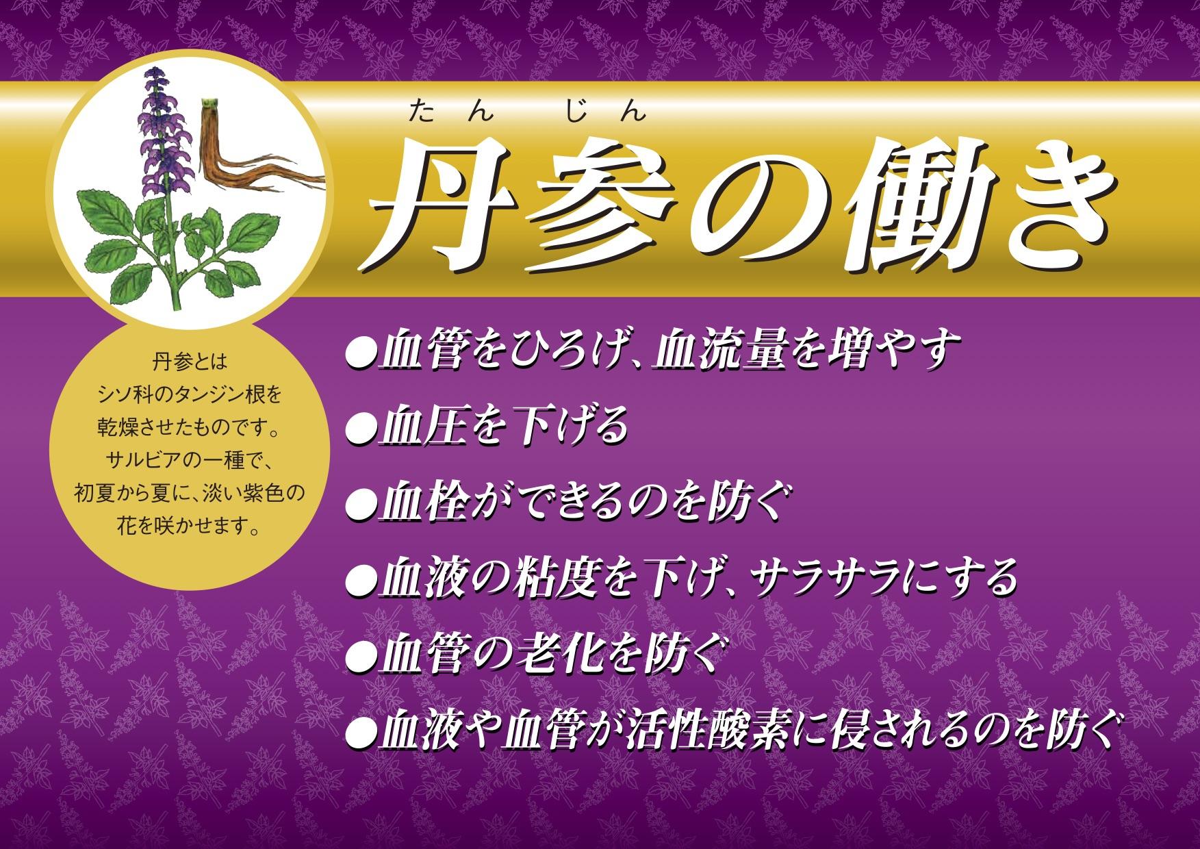 丹参血流チャートA4(表).jpg