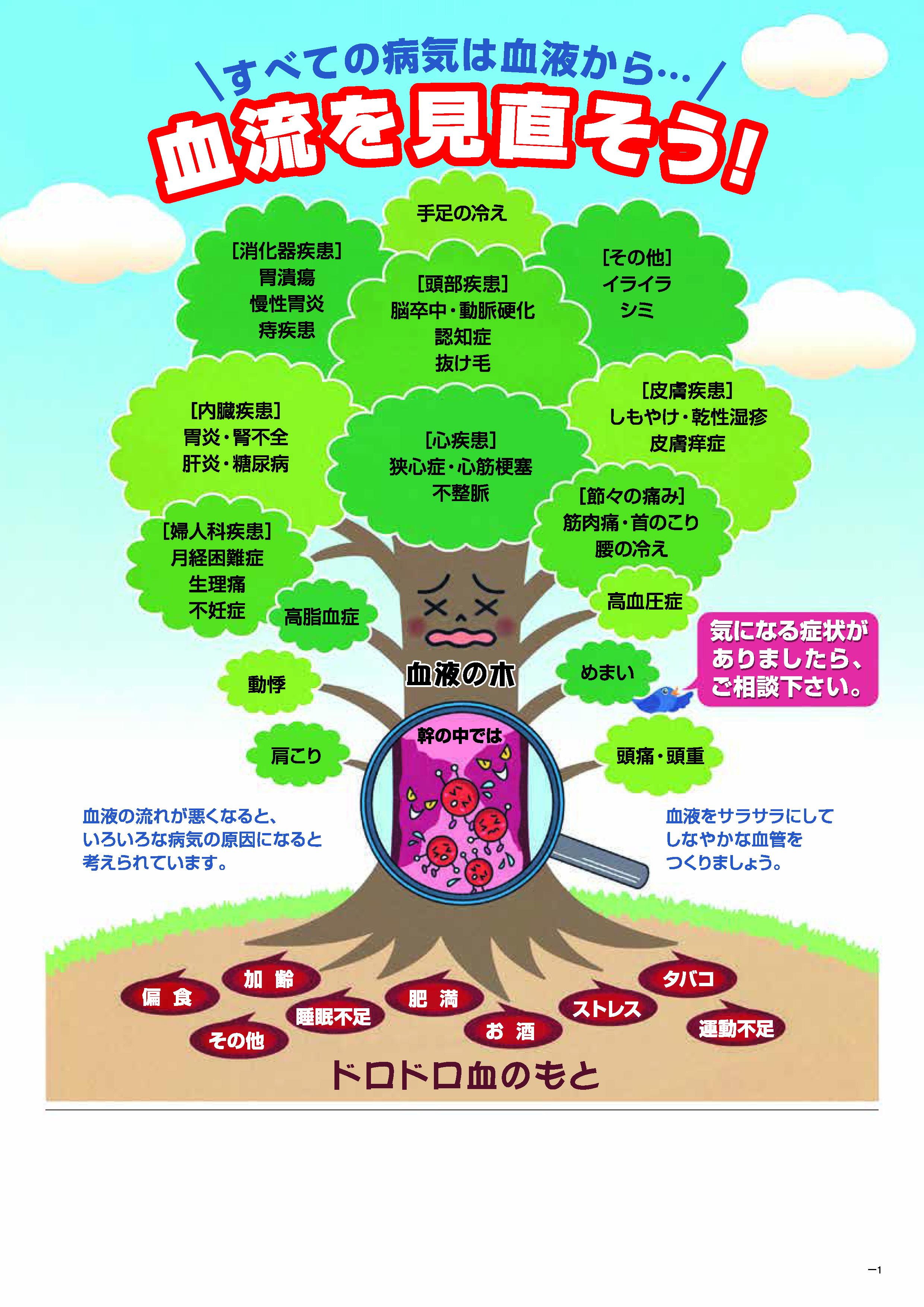 血流を見直そうパンフA4(表).jpg