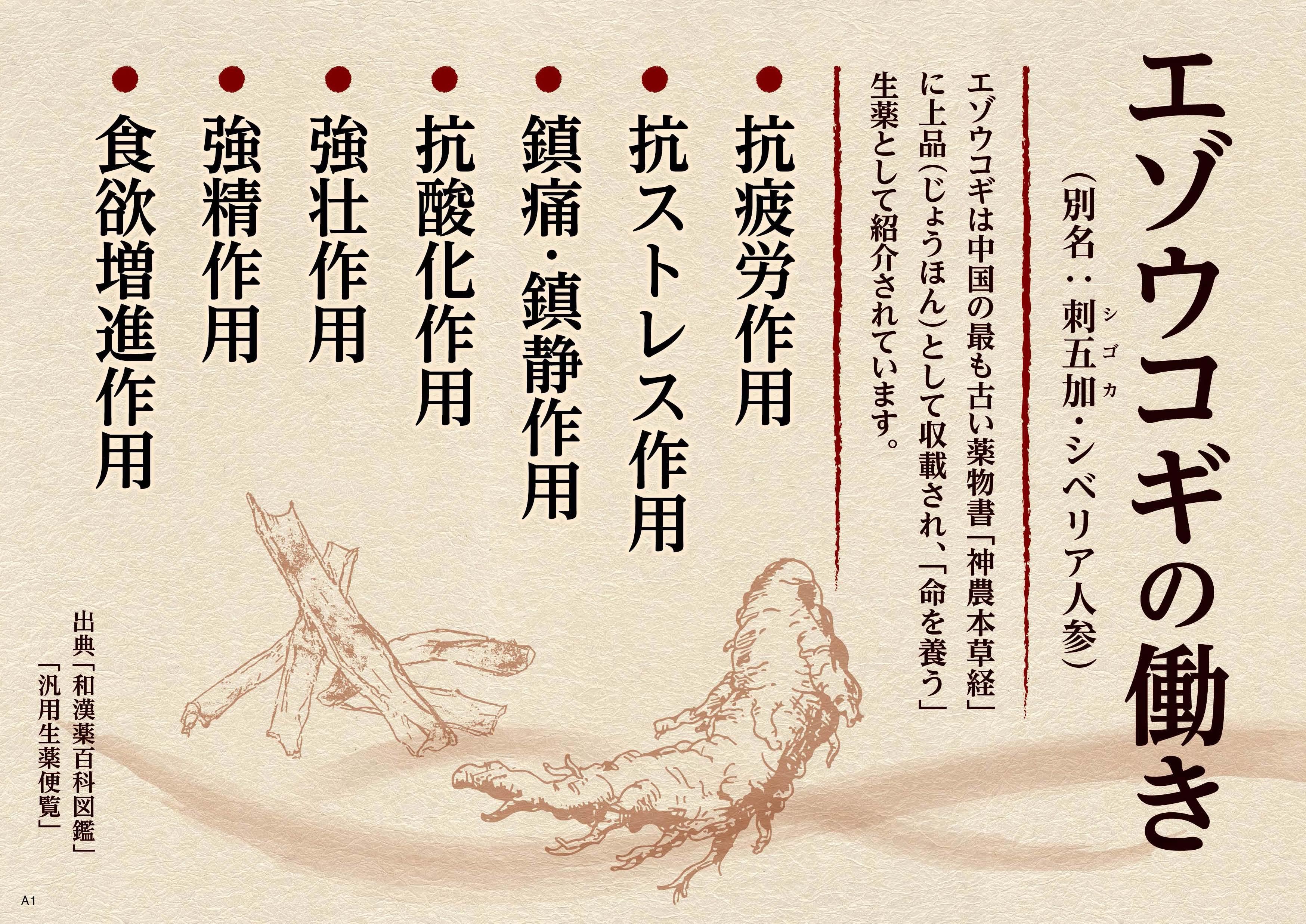 ロクジョウ_エゾウコギチャートA4(裏).jpg