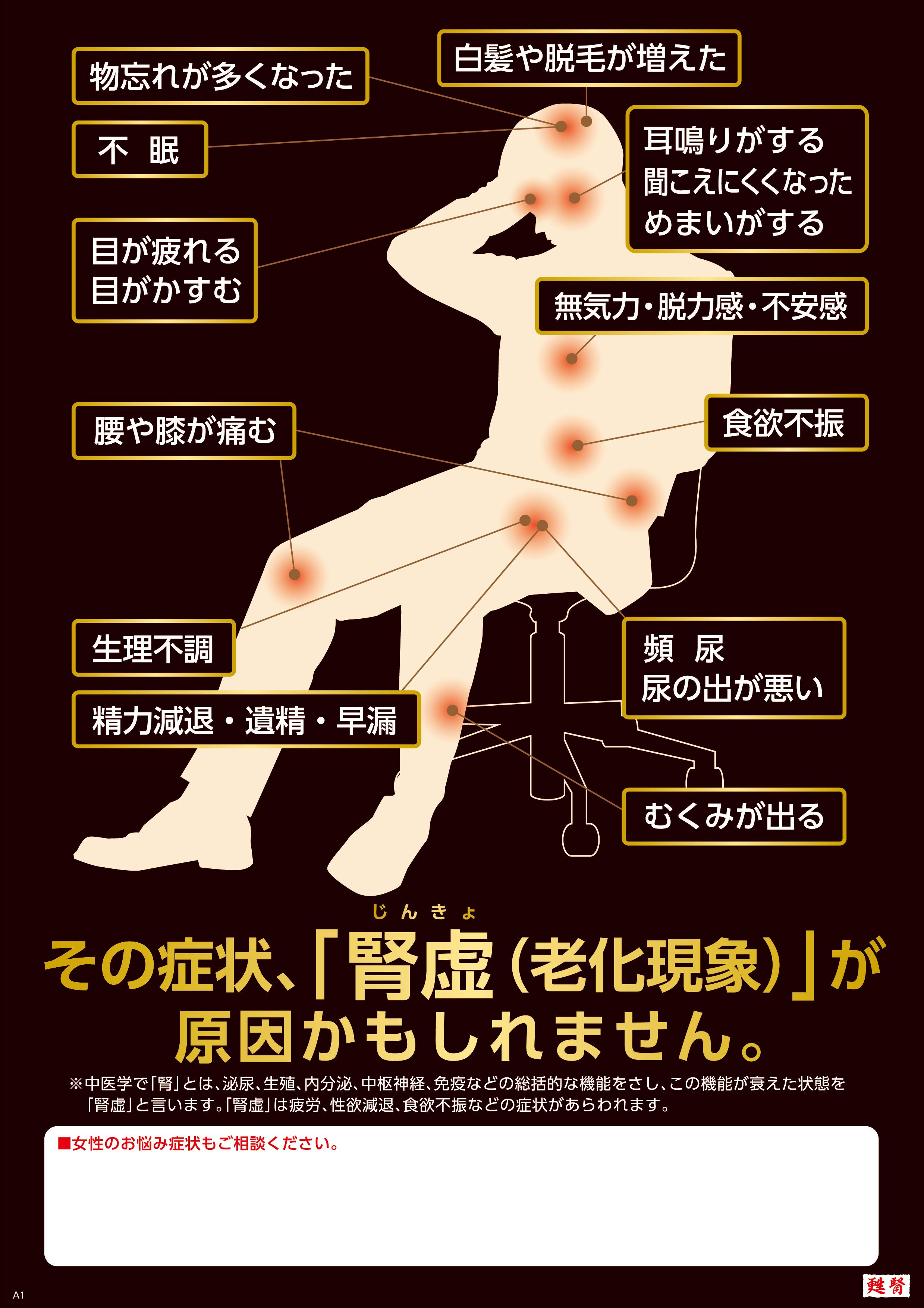 腎虚人体ポスターA4.jpg